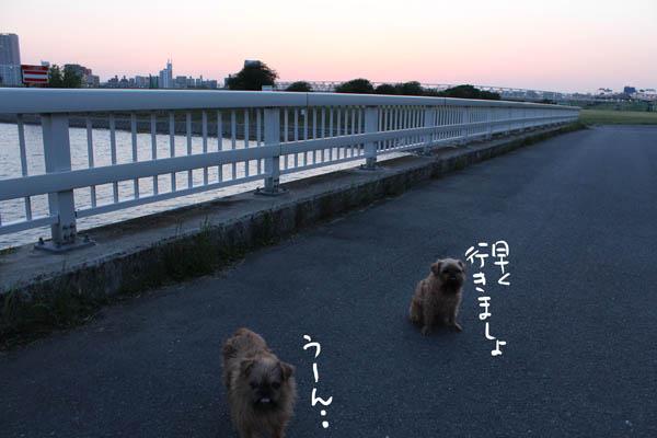 050-mayoi-6.jpg