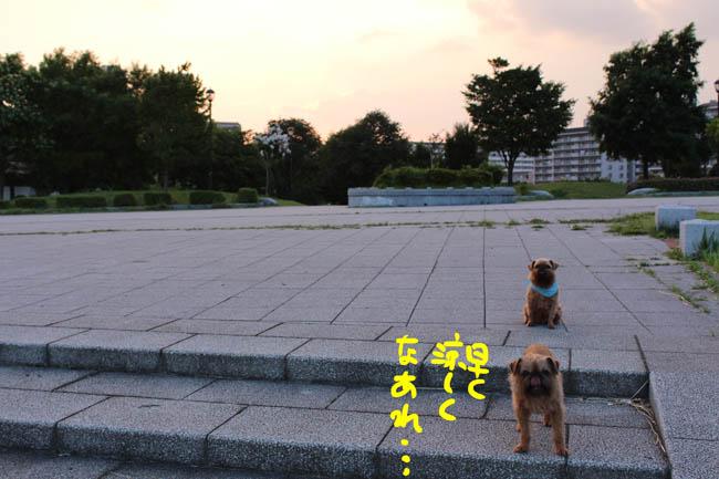 086-atui-8.jpg