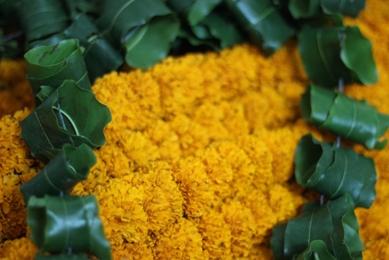 marigold-mango-mala.jpg