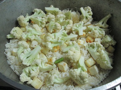 vegpulao-2layer.jpg