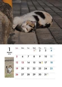2014地域ねこカレンダー 1月