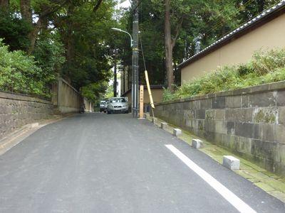 hikawashrine3.jpg