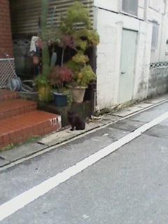 沖縄20140109-05