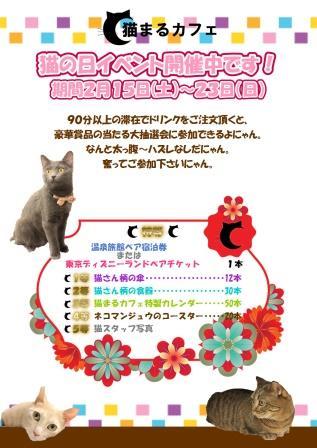 猫の日201402