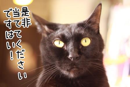 しろう店長20140216-02