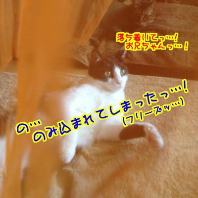 _3mZxhFnMU7T4Uq1411551335_1411551875.jpg