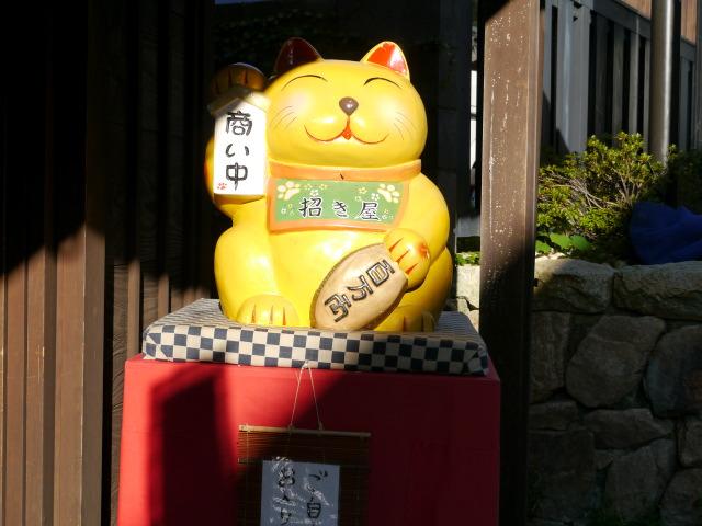 P1160660 猫看板