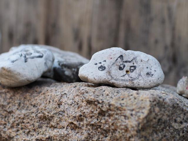 PA080179 猫の石2