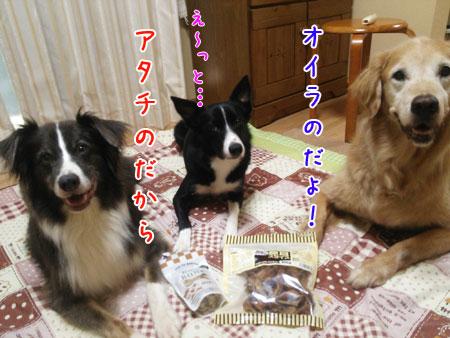 DSC_0390aquo2w45.jpg
