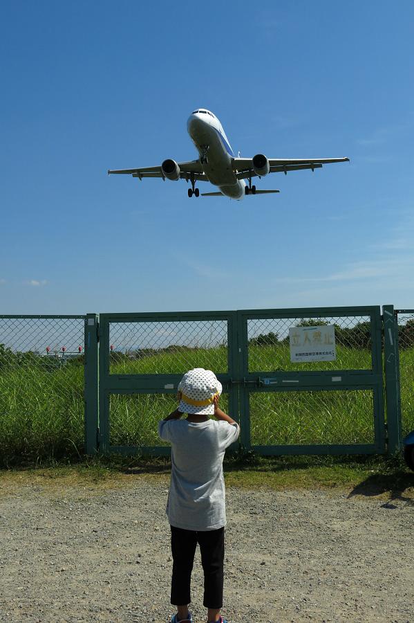 ANA A320-211 / ANA774 (JA8997)@RWY32Lエンド・千里川土手