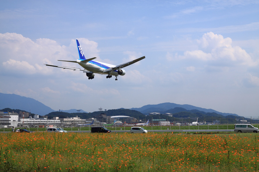 ANA B777-281 / ANA251 (JA713A)@福岡空港RWY16エンド