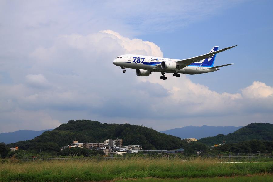ANA B787-8 / ANA255 (JA811A)@福岡空港RWY34エンド
