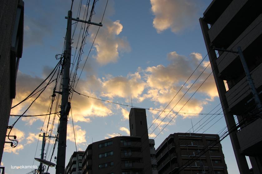 DSC_0154_Fotor.jpg