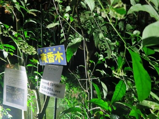 2014.09.27 植物公園 033