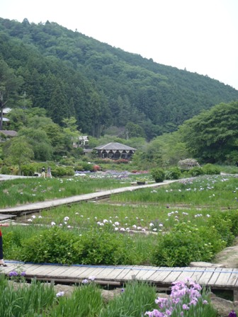 6・9滝谷全景5blog