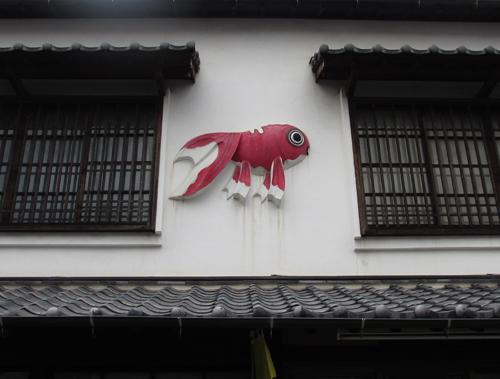 白壁の金魚