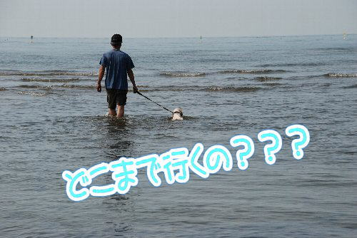 2013・07・21白浜3