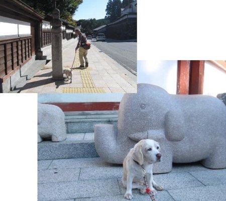 2013・10・13高野山参道