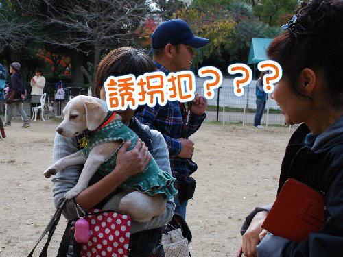 2013・11・23塚オフ5