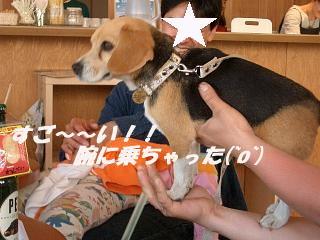2013・09・09ナナ2