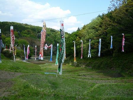 2013.5.4.karasuyama 034