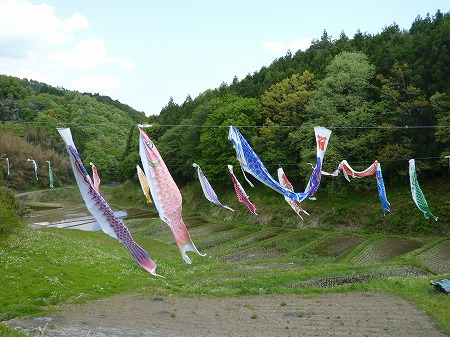 2013.5.4.karasuyama 035