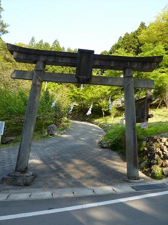 2013.5.9.narukamiyama 001