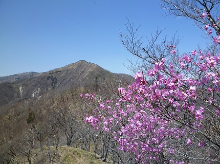 2013.5.14.akayashio 060