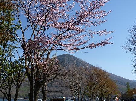 2013.5.14.akayashio 005