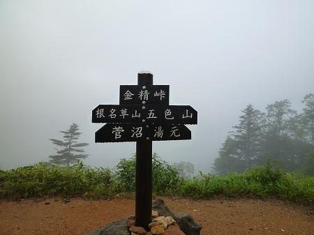 2013.8.5.nenagusayama 011