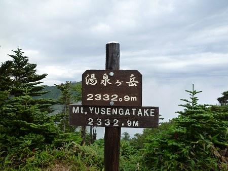 2013.8.5.nenagusayama 028