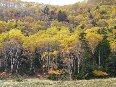 2013.10.4.maeshirane 070