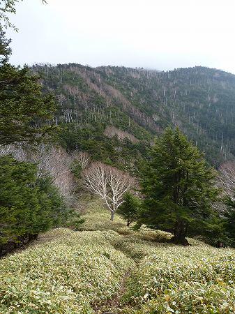 2013.11.9.Mt.Taro 010