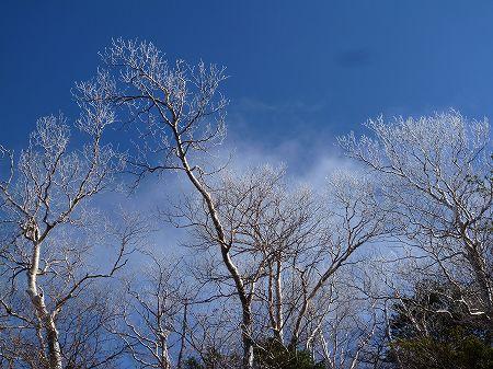 2013.11.9.Mt.Taro 023