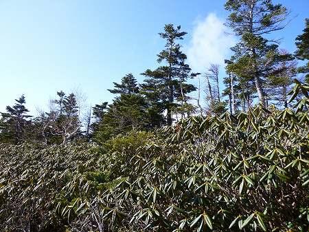 2013.11.9.Mt.Taro 060