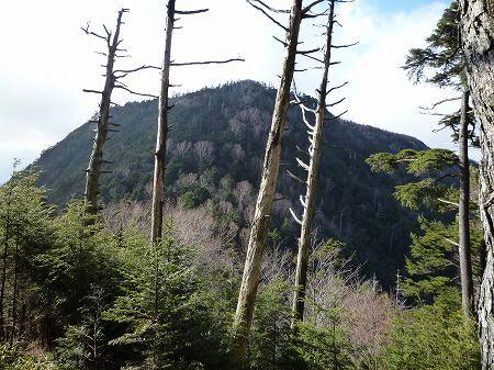 2013.11.9.Mt.Taro 066