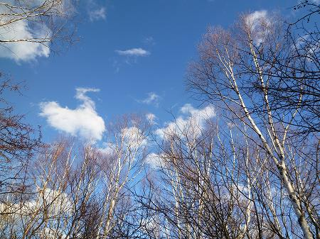 2013.11.19.nikko 073