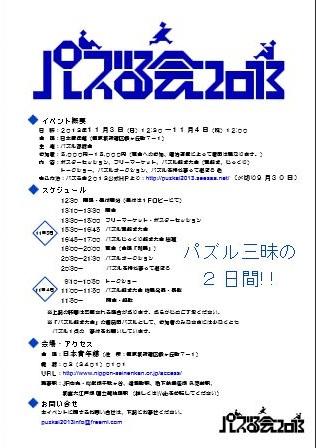 puzkai2013_002