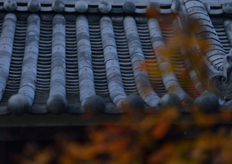 2013-11-22_0066-750.jpg