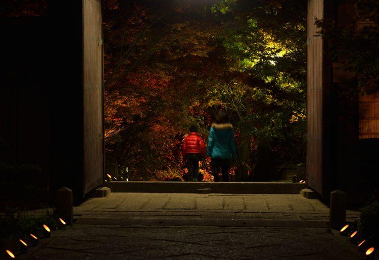2013-11-22_0104-750.jpg