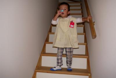 階段上履き