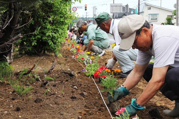 20130615町民らがボランティアで花植え
