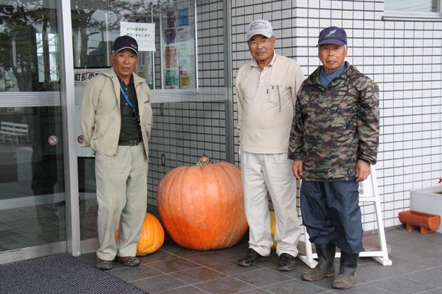 20130930田村忠行さん(市内4)がジャンボカボチャを役場前に設置