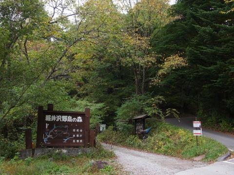 野鳥の森入口131015