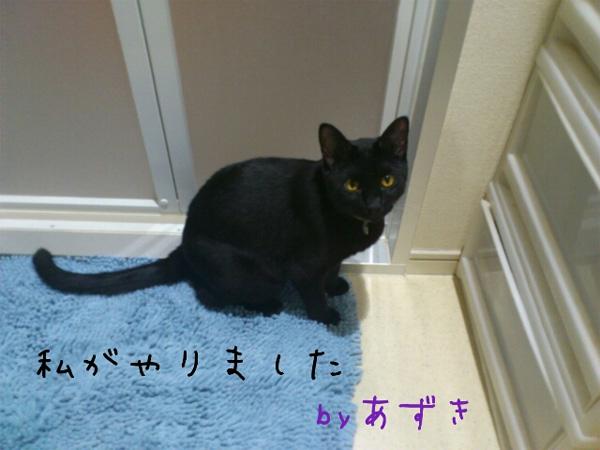anazuki07.jpg
