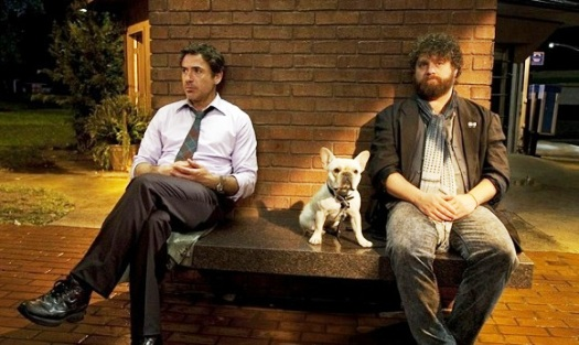 Due Date 2