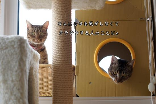 3_20130505132900.jpg