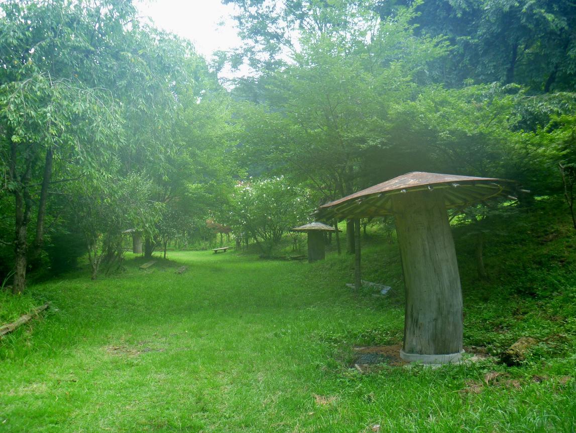 袋谷親水公園 (1)
