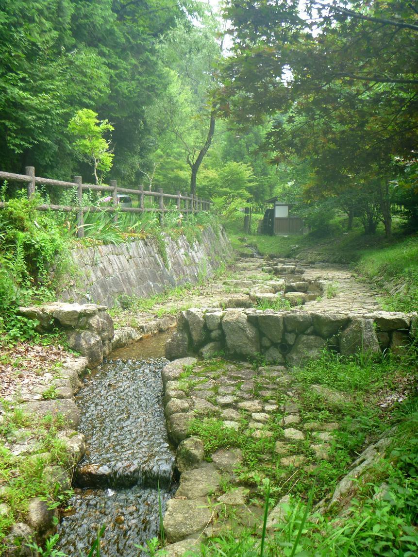 袋谷親水公園 (2)