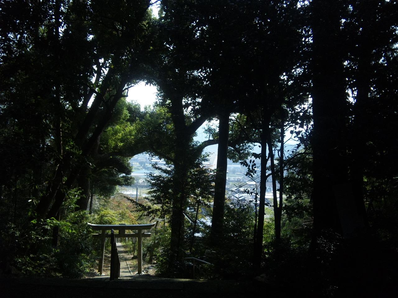 大宮神社 (6)
